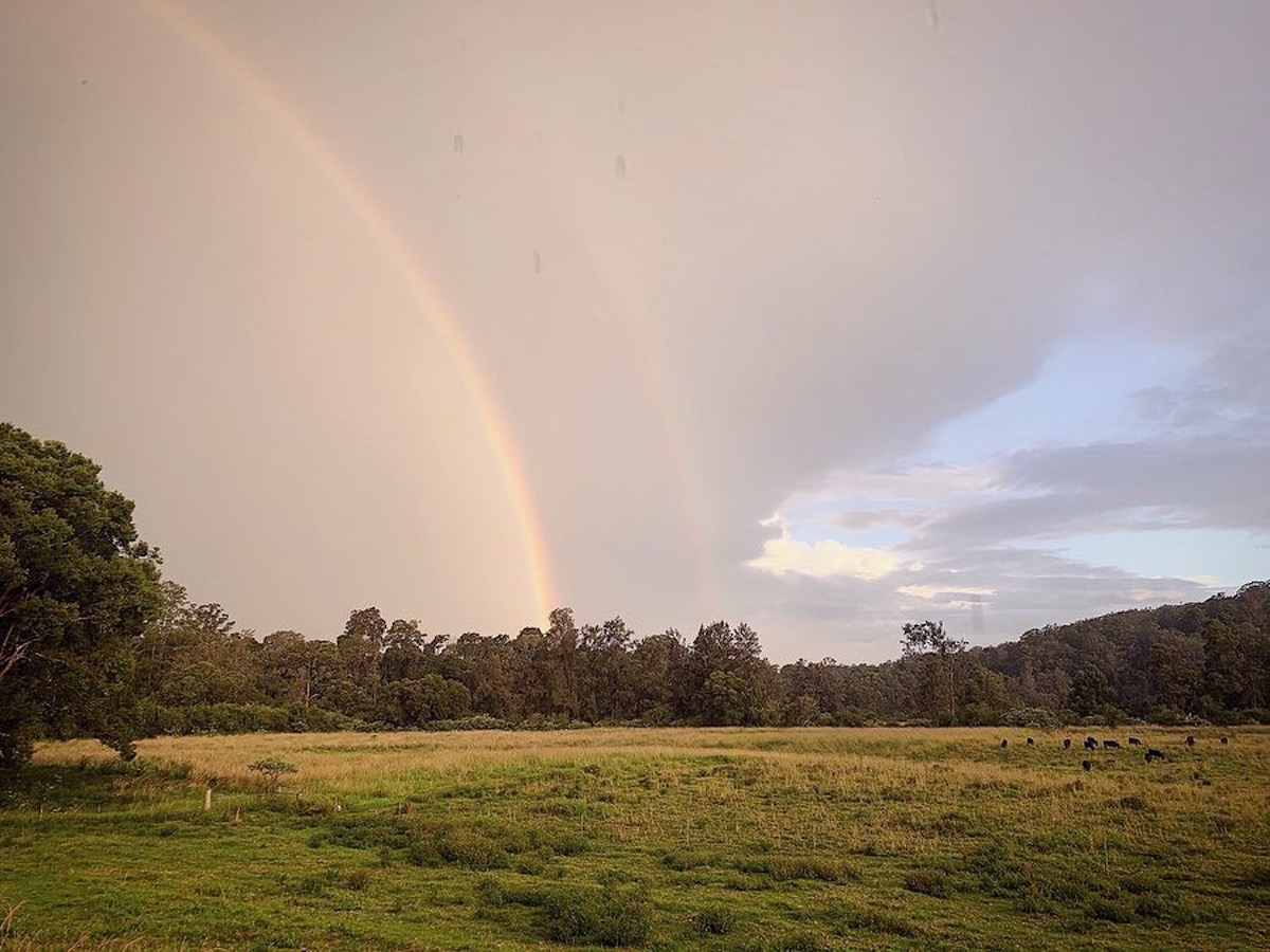 Bellingen Shire photo - field with double rainbow, Bellingen Shire Connections Centre - I've got Coronavirus / COVID